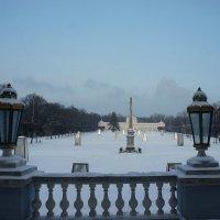Вид на парк из Танцевального зала (Зеркальной галереи) дворца :: Елена Павлова (Смолова)