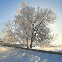 Мороз :: Сергей Григорьев