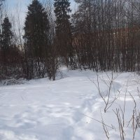 Снежная тропа в городе :: Svetlana Lyaxovich