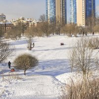 Усадьба Александрино зимой :: bajguz igor