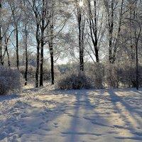 Тропинка к солнцу... :: Sergey Gordoff
