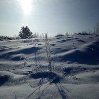 """""""А за городом зима, зима, зима..."""" :: BoxerMak Mak"""