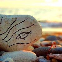 Золотая рыбка :: Vadim Zharkov