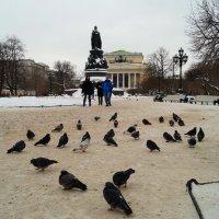 Екатерининский сад.Санкт-Петербург. :: Андрей Иванов