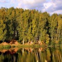 Река и березы с красной землей :: Наталья