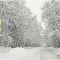 Снежно :: DimCo ©