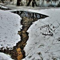А воды уж весной  шумят :: олег свирский