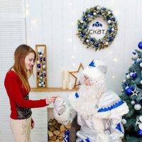 Подарок! :: Светлана Громова