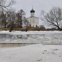 Храм на Нерли :: Ирина Ярцева