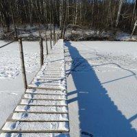 О тенях, о следах на снегу... :: Бажина Нина