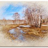 Весенний лес :: Владимир