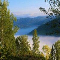 По утру в долине туман :: Сергей Чиняев
