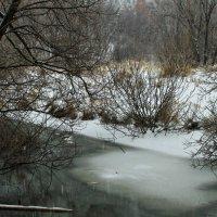 Зима,зима :: олег свирский