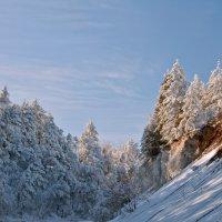 Зима- это кусочек волшебства... :: Наталья Димова