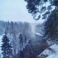 Туманная даль :: Наталья Ерёменко