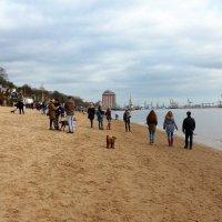 Зимний пляж :: Nina Yudicheva