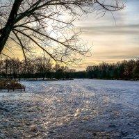 Зимний вечер.......... :: Александр Селезнев
