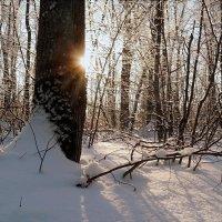 Про февральские рассветы.. :: Андрей Заломленков