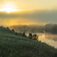 Утренний туман :: алексей чусовской