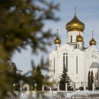 Храм Рождества Христова :: Геннадий