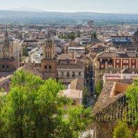 Вид на центр Гранады из Альбайсина :: Владимир Брагилевский
