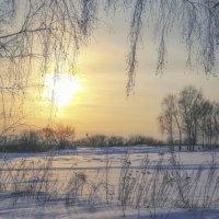 Вот такая спящая весна... :: Svetlana Sneg