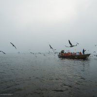 Рассвет на Ганге.. :: Ирина Малышева