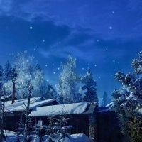 Лунная ночь :: Наталья Ерёменко