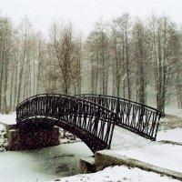 Пол-года плохая погода, пол-года совсем никуда :) :: VasiLina *