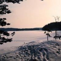Красивая,добрая ,Финляндия.. :: Валентина Потулова