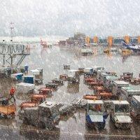 Нелётная погода :: liudmila drake