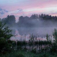 на заре я выйду в туман :: Сергей Бойцов
