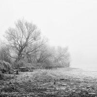 Туман на болоте... :: Сергей