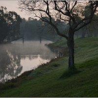 Утром в парке. :: Lmark
