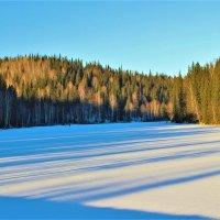Длинные синие тени декабря :: Сергей Чиняев