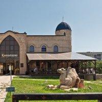 Казахское подворье. Национальная деревня. Оренбург :: MILAV V