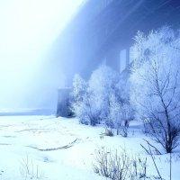 Зима Новосибирск :: Екатерина Маринина