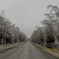 Ледяной дождь :: Переменка Переменка