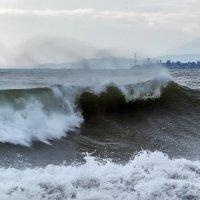 Море волнуется :: Александр Криулин