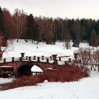 Зима в Павловске :: Петр