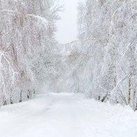 Зимняя дорога :: Вадим *
