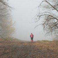 Выхожу из облака :: Светлана Попова