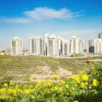 Городской пейзаж :: Tatyana Belova