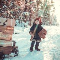 Из леса с подарками :: Ольга Токмакова