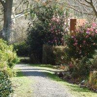 В саду скульптур отеля Брумхил :: Natalia Harries