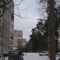 Мартовская зима :: Svetlana Lyaxovich