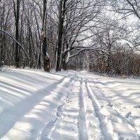 До мая будем мы ходить на лыжах!:) :: Андрей Заломленков