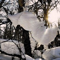 И мартовское солнышко нам душу веселит.. :: Андрей Заломленков