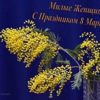 Милые Женщины, с Праздником 8 Марта вас! :: Сергей и Ирина Хомич