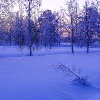 рано утром в морозный день (-25 С) :: Георгий